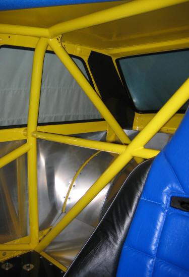 cage17.jpg